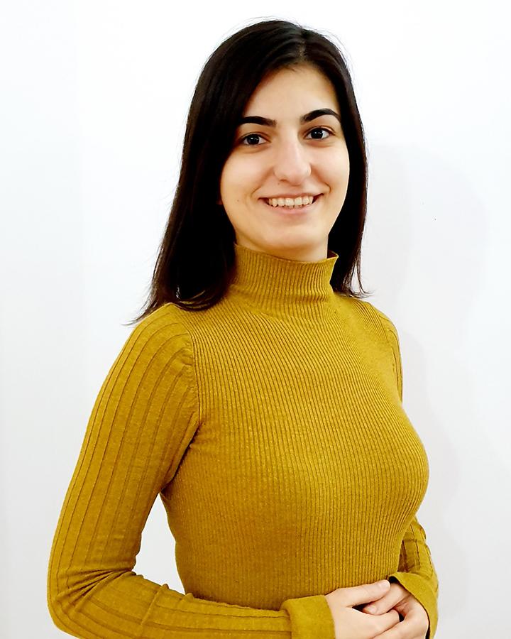 Maria Sălăjan image